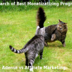 Affiliate Marketing vs Google Adsense : Who is the Winner?