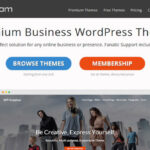 SoloStream Review : New Generation WordPress Themes