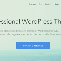 Magazine3 Review: Premium WordPress Themes